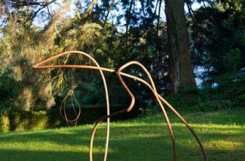 exposiciones-2019-waldhof